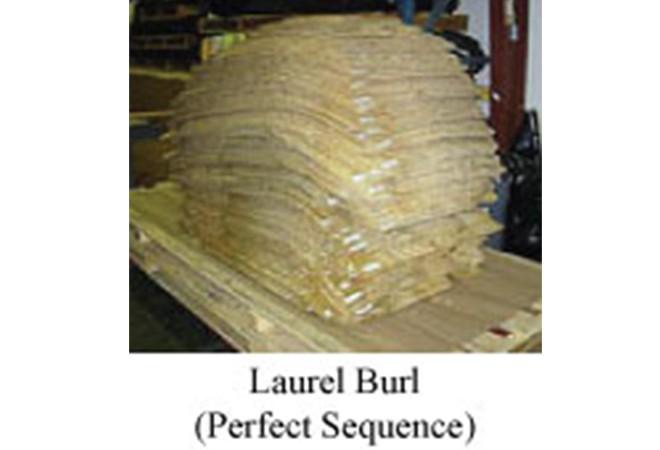 burl bundels